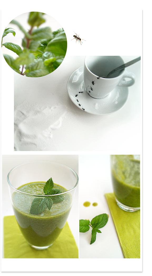 sonja-egger-ameisen-smoothie-fruehlingsboten