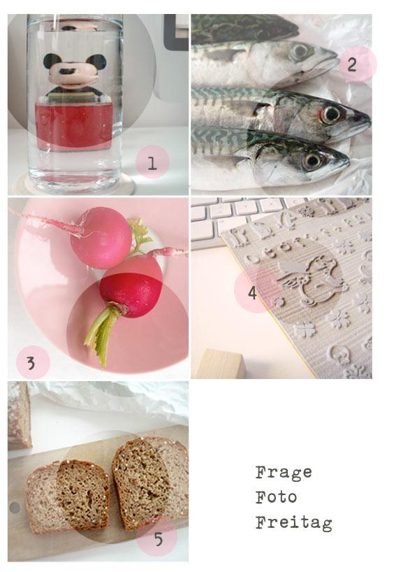 sonja-egger-frage-foto-freitag